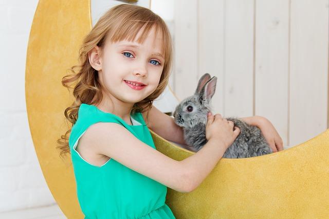 Čime se igraju zečevi